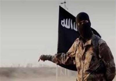 داعش بقایش را به آمریکا مدیون است