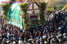 آیین سنتی نخل برداری در بجستان برگزار شد