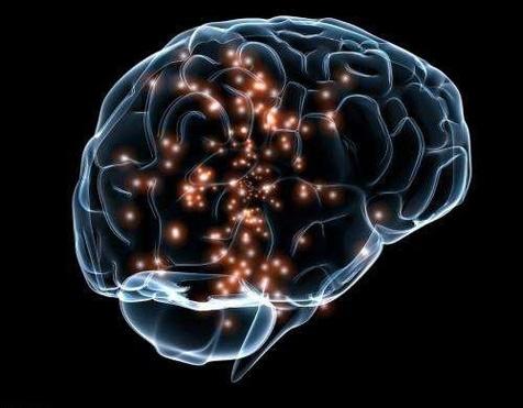 مشاهده منطقه خودخواهی در مغز