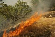 آتش باردیگر دامنگیر جنگل ابر شد