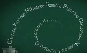 فرمول شیمیایی انسان محاسبه شد