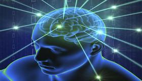 افراد را از روی امواج مغزی آنها بشناسید!