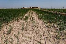 دشت شهرکرد ۲۷۲ میلیون مترمکعب کمبود آب دارد