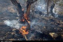 کنترل آتشسوزی جنگلهای اندیکای خوزستان  آتشسوزی در کوه اودیز