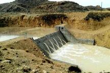 اجرای طرح های آبخیزداری در سیرجان مانع سیلاب شد