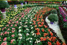 نهمین جشنواره گلها در ارومیه آغاز بکار کرد