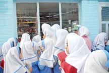 10 درصد مدارس کردستان دارای مجوز پایگاه تغذیه سالم هستند