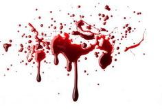 مادر آمریکایی سه کودکش را کشت