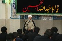 حرکت عظیم اربعین از ثمرات شجره طیبه انقلاب اسلامی است