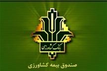 15 درصد خسارت بخش کشاورزی کردستان به بهره برداران پرداخت شد