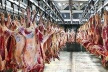 17 هزار تن گوشت آماده انتقال به کشور است
