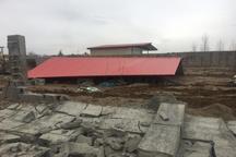 372 مورد ساخت و ساز غیرمجاز در اراضی کشاورزی کرج تخریب شد