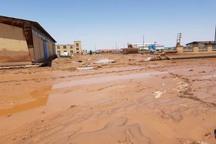 سیل 15 میلیارد ریال به شهرک صنعتی آراسنج خسارت زد