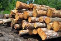 بیش از 10 تن زغال و چوب قاچاق در سنندج کشف شد