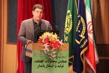 استان تهران در توسعه گلخانه ها سرآمد کشور است