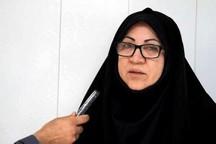 مدیرکل ارشاد بوشهر خواستار بیمه خبرنگاران این استان شد