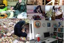 236 میلیارد ریال تسهیلات مشاغل خانگی در کردستان پرداخت شد