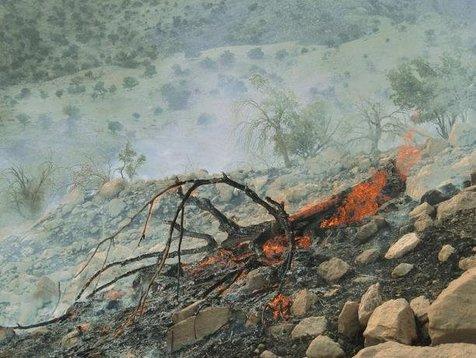 آتش«بهشت کوه»را جهنم کرد