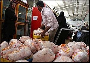 آغاز فروش فوقالعاده مرغ تازه برای ماه رمضان