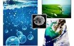 رشد غیرعادی جمعیت پلانکتونها در اقیانوسهای جهان