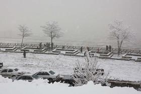 ثبت بارش 30 سانتی متری برف در قزوین