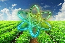 اجرای 161 پروژه تحقیقاتی کشاورزی در اردبیل