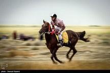 مسابقات کشوری «هنرهای رزمی سواره» در مرودشت برگزار میشود