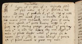 نیوتن راز سرپیچی گیاهان از گرانش را می دانست