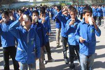 دانشآموزان ابتدایی و متوسطه روستایی ایلام شیر رایگان دریافت میکنند