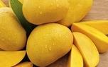 جدیدترین قیمت میوه در میادین تره بار+ جدول