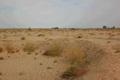 خواستار برنامه مدیریت یکپارچه سرزمینی در کانون های ریزگرد خوزستان هستیم