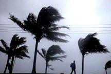 باد شدید در غرب خوزستان جولان می دهد