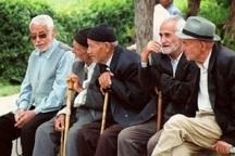 10درصد جمعیت شهرستان مراغه سالمند هستند