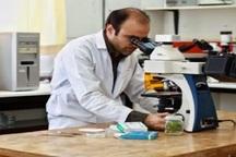 تشویق به پژوهش در دانشگاه امام ( ره) قزوین افزایش  یافت