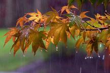 بارش های رگباری در استان اصفهان ادامه می یابد