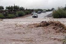 بارش باران چهار مسیر روستایی جاده فین- روید را مسدود کرد