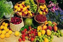 هفت درصد محصولات کشاورزی ایران در البرز تولید می شود