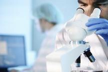 تشخیص زودهنگام راهکار درمان سرطان ها