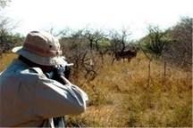 ۳۲۰ شکارچی متخلف در اردبیل دستگیر شدند