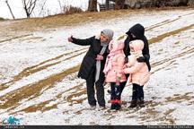 تصاویر زیبایی از برف امروز تهران