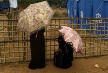 زیر چترها+ عکس