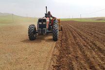 کاشت غلات در اراضی کشاورزی گیلانغرب آغاز شد
