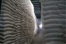 کشت و صنعت امیرکبیر در تولید شکر رکورد زد