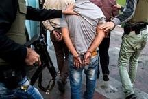 پنج فروشنده مواد مخدر در شهرستان حمیدیه دستگیر شدند