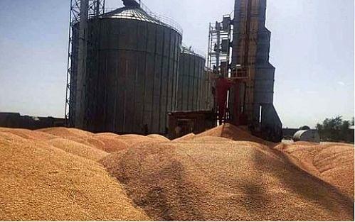 افتتاح سیلو 21 هزار تنی ذخیره گندم در مازندران