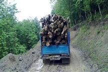 70 اصله چوب آلات قاچاق جنگلی در اردبیل کشف شد