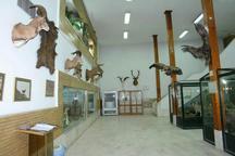 موزه تاریخ طبیعی زنجان در ایام نوروز پذیرای بازدیدکنندگان است