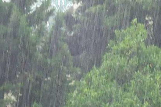 بارش پراکنده باران قزوین را فرا می گیرد