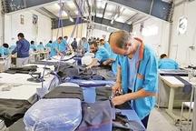 10 هزار نفر در کارگاه های مهریز مشغول کار هستند