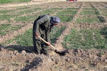 پرونده دیون کشاورزان خسارت دیده کردستان بسته شد